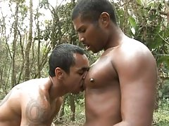 Two good-looking, athletic black guys having a nice outdoor scene together. These guys are hot and they`re so excited to work with each other`s rock hard dicks. The tattooed black hunk goes bottom and gives his pal a blowjob before submitting his sexy ass